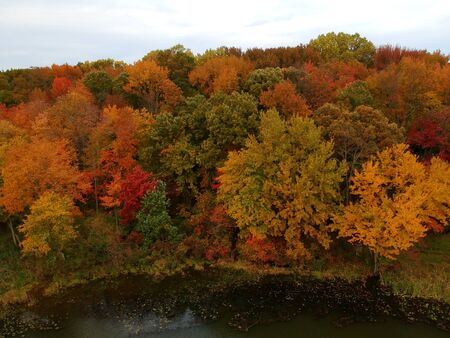 Stunning aerial view of fall foliage near Wilmington, Delaware, U.S.A