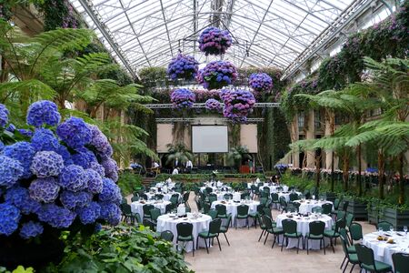 Beautiful wedding reception area decorated with green tropical trees and blue hydrangea flowers