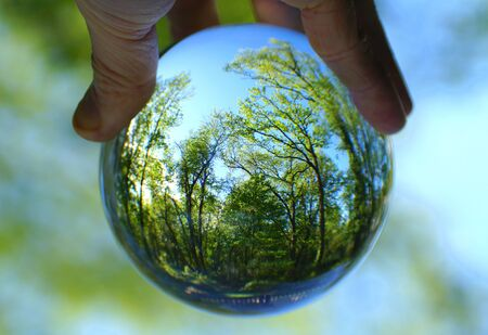The green forest captured through a crystal lens ball