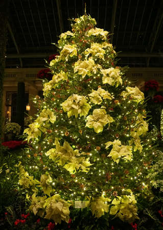 A Christmas tree decorated with ornaments and yellow poinsettia