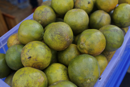 scurvy: Basket of oranges Stock Photo
