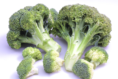 cruciferous: Fresh broccoli on white with soft shadow