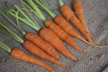 food staple: A shot of a group of carrots resting on a chopping table at a market.