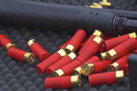 shotgun: 12 gauge shotgun shells with shotgun on surface Stock Photo