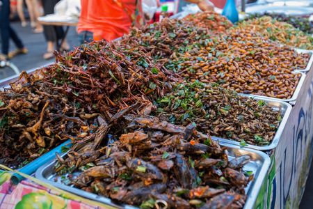 Insect fried.The food on street food in Thailand- A snack often used in Asia. Soft Focus and blur.