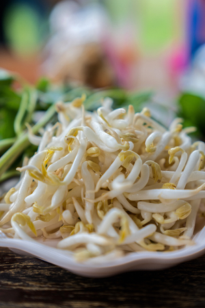 bean sprouts: Bean sprouts ingredients of Asian noodles