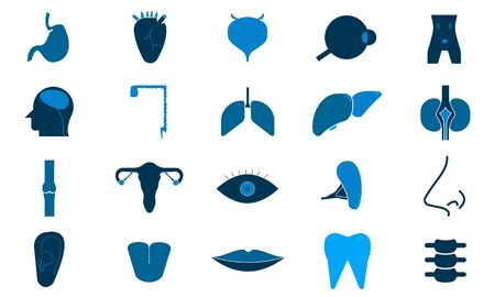 Body parts icon set vector illustration can be used website .