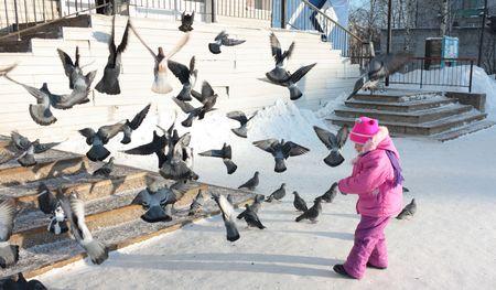 The little girl winter day grain fed pigeons.