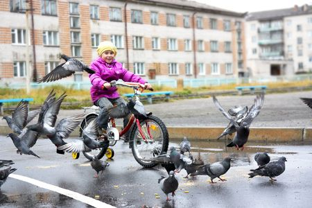 disperse: Girl on a bicycle to disperse pigeons.