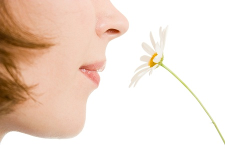 Girl smelling a flower on a white background.
