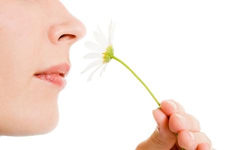 nose: Ragazza che sente l'odore di un fiore su uno sfondo bianco. Archivio Fotografico