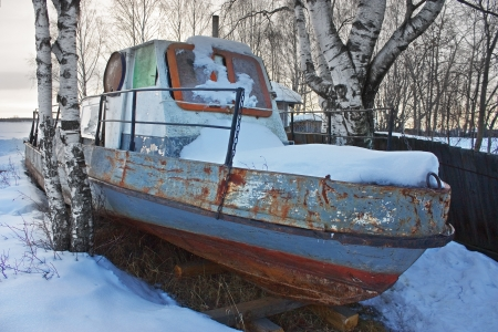 Old abandoned boat in the trees. photo