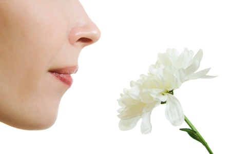 odor: Girl smelling a flower on a white background.