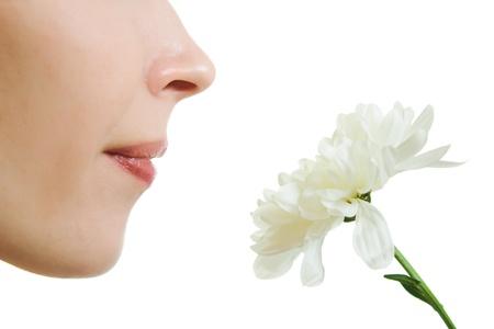 olfato: Niña oliendo una flor sobre un fondo blanco.