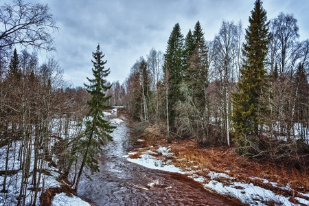 spring season: Dark river in the winter mountain forest. Stock Photo