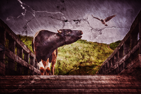 bellows: The bull bellows on the bridge in the rain. Photos in the grunge style. Stock Photo