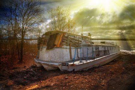 amongst: Deserted rusty ship on the coast amongst the trees.
