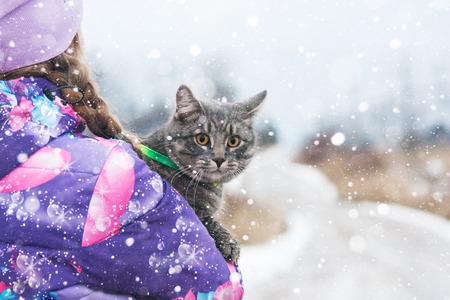 A young girl hugs her beloved kitten on a winter Christmas day. He is walking along the road. Stock Photo