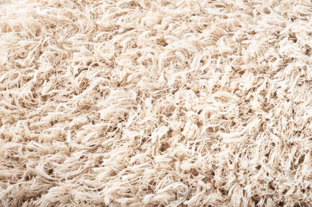 Close-up of beige carpet texture. Natural fur background. Texture, abstract pattern