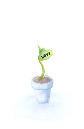 "The growth of love - Fresh green sapling with word ""LOVE"" growing out of pot painted in watercolor on clean white background"