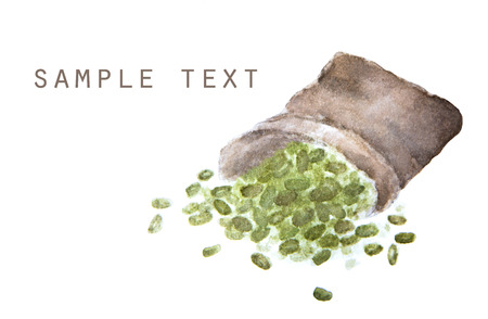 water: Watercolor drawing of Mung beans in sackcloth with place for text