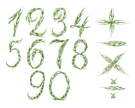 Collection of numbers and calculator icon from green leaves. Zero to nine, plus, minus, multiplication and division. Isolated on white background. Watercolor illustration.