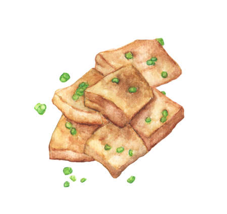 Fried tofu with onion on a white background, Watercolor Hand painted illustration Stok Fotoğraf