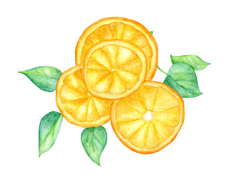 Slice of orange fruit and green leaves isolated on white background , with clipping path, Hand drawn watercolor illustration