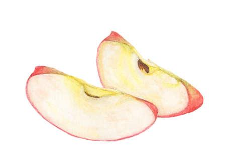 Watercolor painted slice of Apple fruit - Red apple quarter Reklamní fotografie