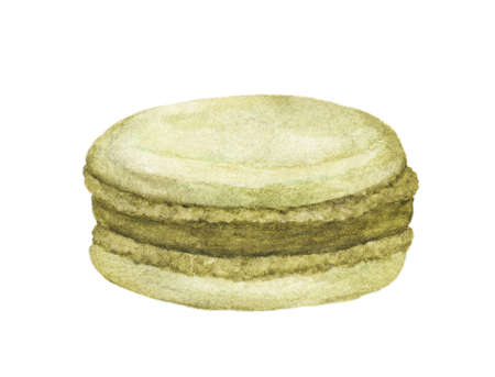 Green Macaroon ,French Patisserie, Dessert, sweets, pastry, bakery, Watercolor illustration on white background. Reklamní fotografie