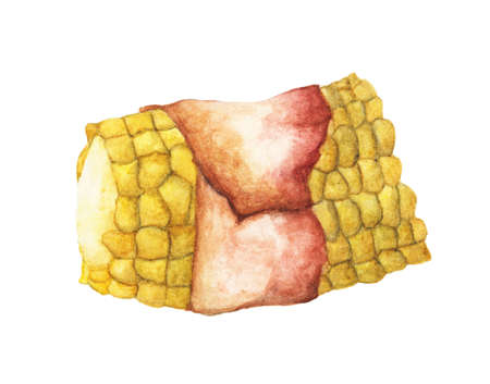 Grilled bacon wrapped corn isolated on white background. Watercolor illustration For Food Design.