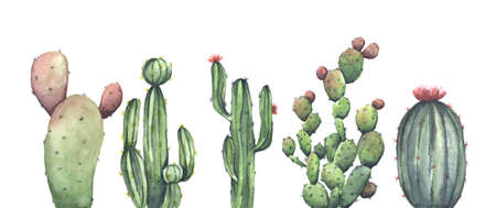 Hand painted watercolor set of cactus. Isolated on white background. Flower illustration for your project, wedding, greeting card, photos, blogs, wreaths, pattern and more. Reklamní fotografie