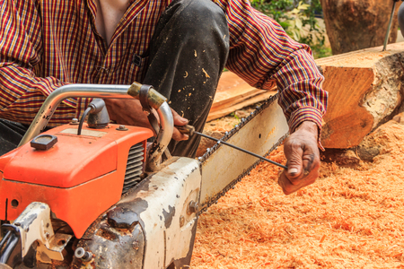 blade cut: Man sitting filings chainsaw blade with cut wood Stock Photo