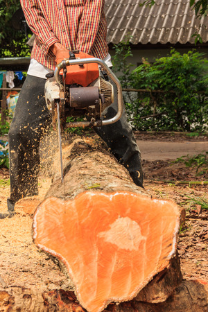 man cuts wood with engine sawing
