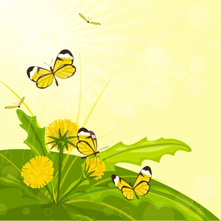 Vector blossoming dandelion, grass and butterflies