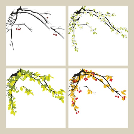 Apple-tree in the winter, in the spring, in the summer and in the autumn. Ilustração