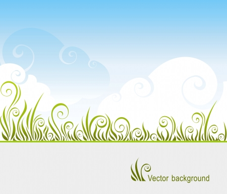 background with a grass and the sky