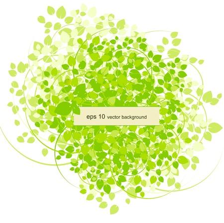 Spring background with leaf.  Illustration