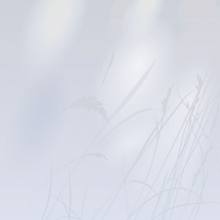 Easy background with a shadow from a grass Illustration