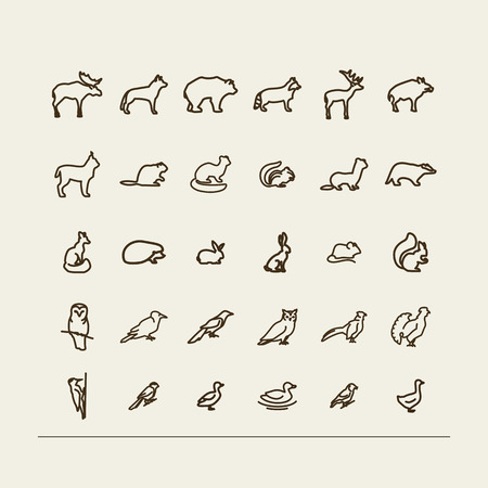 mink: Set with icons - forest animals and birds. A vector. Illustration