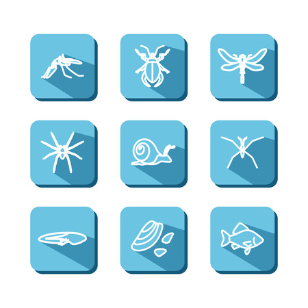 reservoir: Set with icons - animals and insects of bogs, lakes, rivers. Vector.