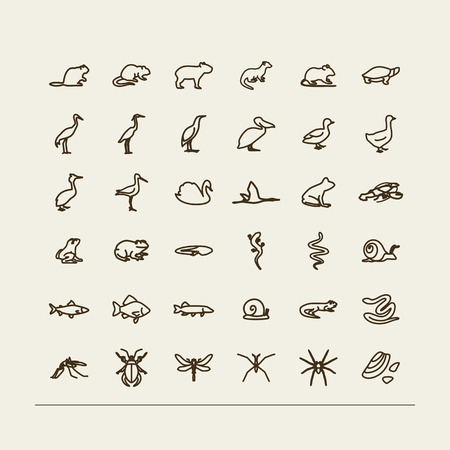 tadpole: Set with icons -  fauna of fresh reservoirs - bogs, lakes, rivers. A vector.