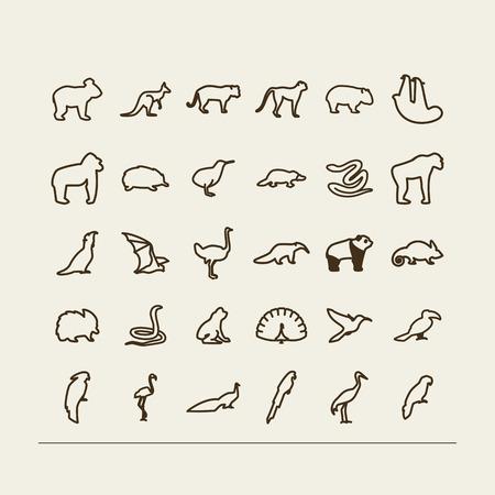 Set met pictogrammen - dieren en vogels. Tropen, Australië. Een vector.
