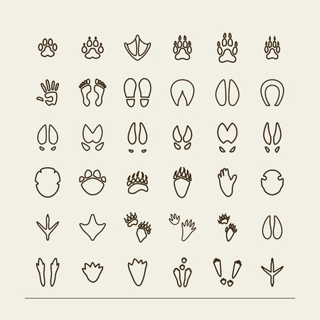 footmark: Set with icons - traces of animals and birds. A vector.