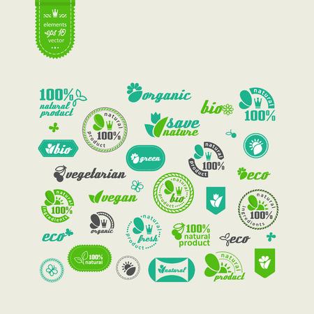 productos naturales: Conjunto de elementos para el dise�o - la ecolog�a, los productos naturales respetuosos del medio ambiente y la comida. Un vector.