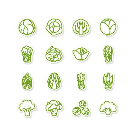 leafy: Set of icons - a leafy vegetables Illustration