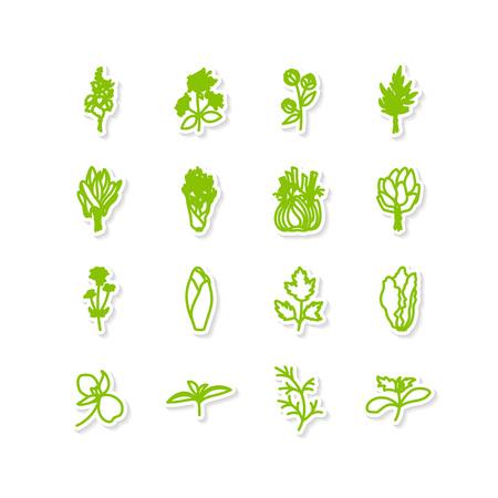 Set van pictogrammen - een bladgroenten. Een vector. Stock Illustratie