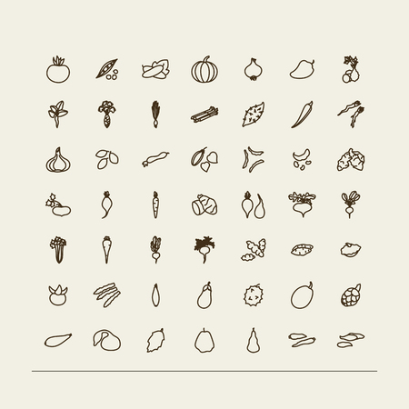 rhubarb: Set of icons - vegetables. A vector.