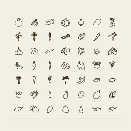 Set van pictogrammen - groenten. Een vector.