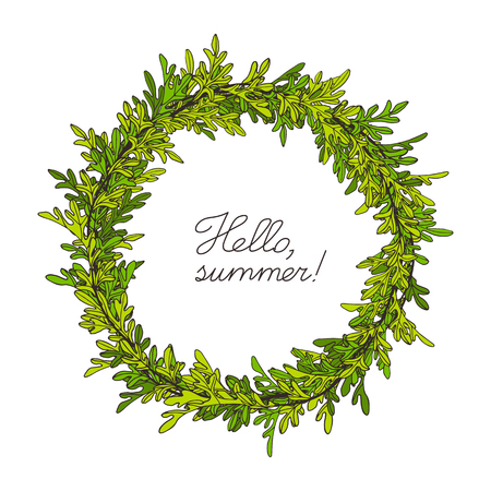 Branches and leaves of a wormwood. Hand drawn vector illustration. Summer background. Illustration